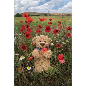 "Badetuch groß ""Travelling Teddy Mohnblumen"" 100x150cm"