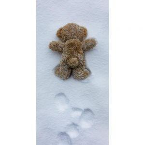 """Badetuch """"Travelling Teddy Upps"""" 70x140cm"""