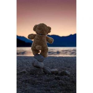"""Badetuch groß """"Travelling Teddy Balance"""" 90x140cm"""