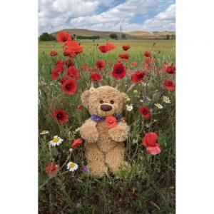 "Badetuch groß ""Travelling Teddy Mohnblumen"" 90x140cm"
