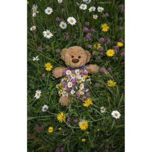 """Badetuch groß """"Travelling Teddy Wiese"""" 90x140cm"""