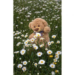 """Badetuch groß """"Travelling Teddy Margeriten"""" 90x140cm"""