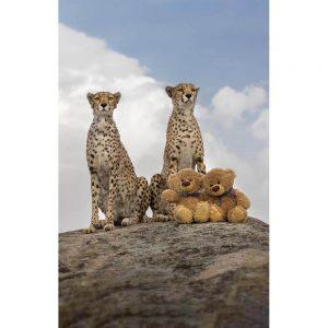 "Badetuch groß ""Travelling Teddy Geparden"" 90x140cm"