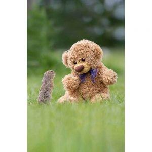 "Badetuch groß ""Travelling Teddy Ziesel"" 90x140cm"