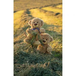 """Badetuch groß """"Travelling Teddy Heugabel"""" 90x140cm"""