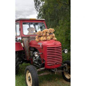 """Badetuch groß """"Travelling Teddy Traktor"""" 90x140cm"""